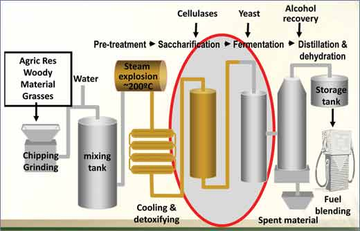 Ethanol_production_from_ligno-cellulose_fibrous_plant_biomass.jpg