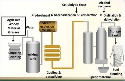 Ethanol_production_from_ligno-cellulose_mascoma_process.jpg